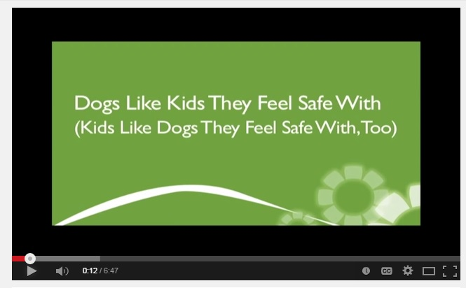 dog-safety